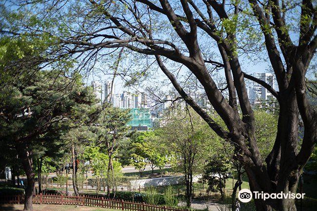 孝昌公園2