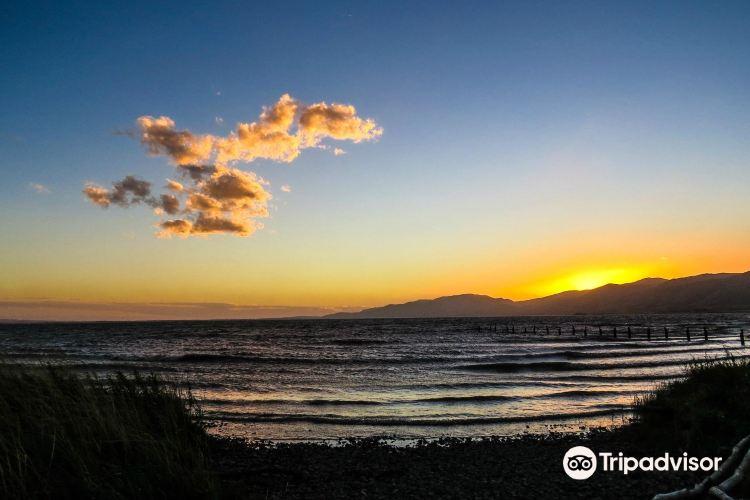Lake Wairarapa1