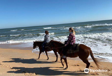 Equestrian Adventures of Florida