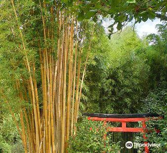 Jardin Arboretum Bonsai