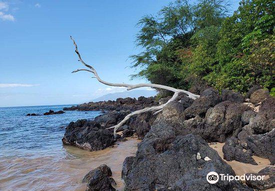 Maluaka Beach3
