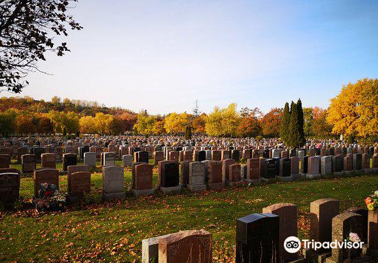 Notre-Dame-des-Neiges Cemetery (Cimetiere Notre-Dame-des-Neiges)3