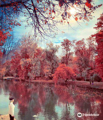 Carol Park (Liberty Park)4