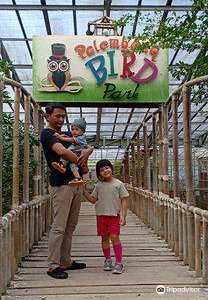 Palembang Bird Park