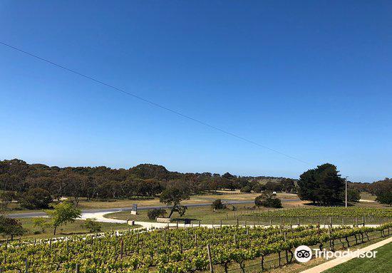 Cape Jaffa Wines