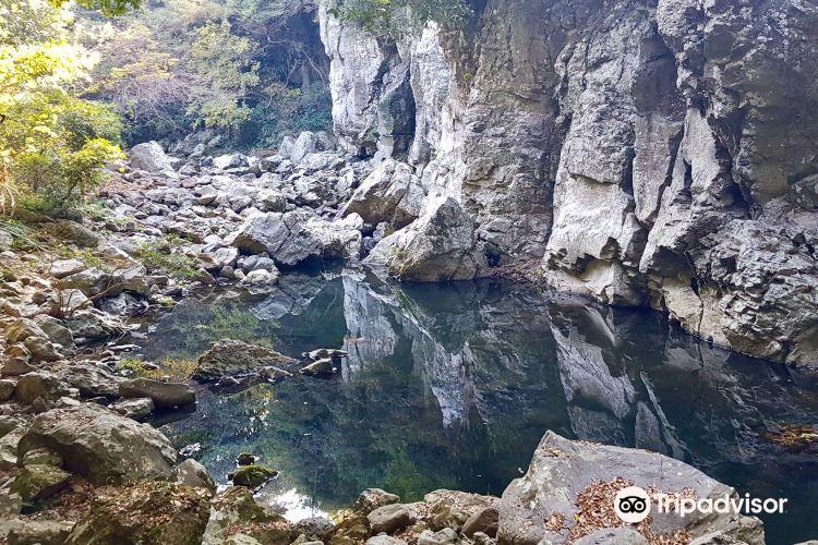 금사탄 해수욕장(화순 )