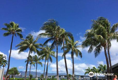 Aloha Pearl Harbor