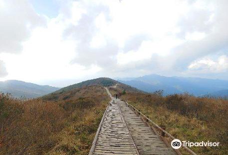 智異山國立公園