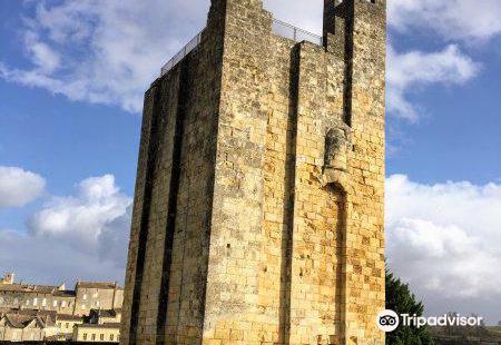 La Tour du Chateau du Roy