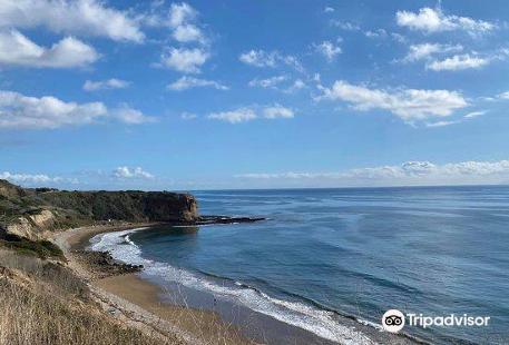Abalone Cove Shoreline Park & Ecological Reserve