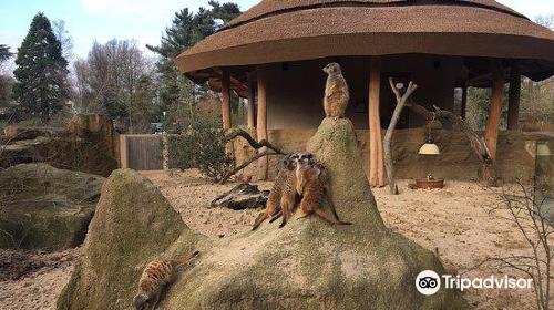 Krefeld Zoo