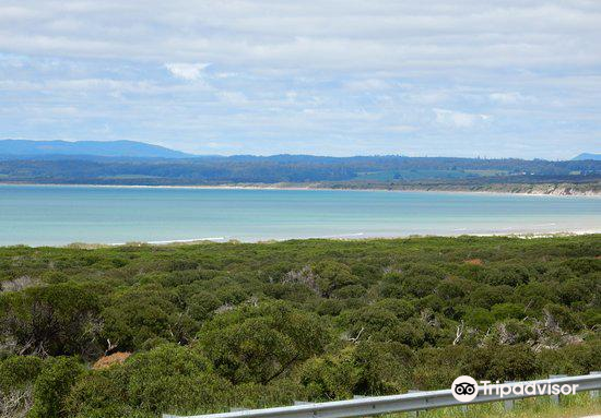 Trethewies Lookout3