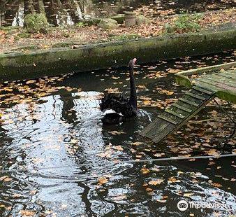 Zoological Garden in Bydgoszcz