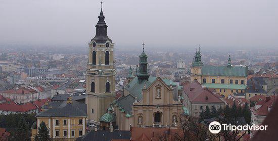 Kazimierzowski Castle3