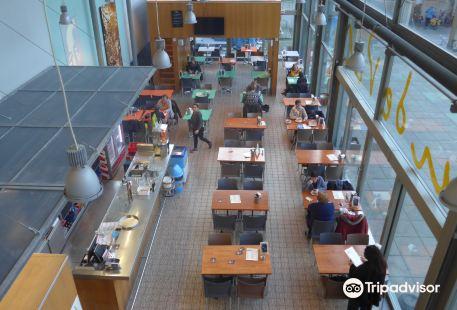 Tweebronnen City Library