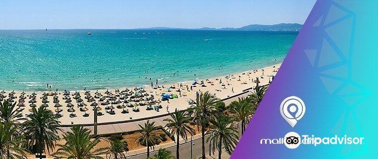 Palma de Mallorca Airport (PMI)2