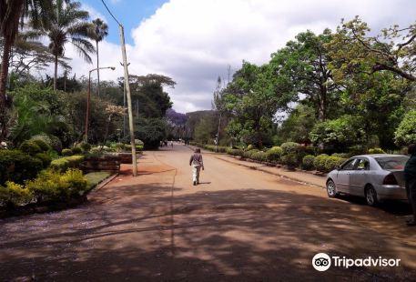 Nairobi City View