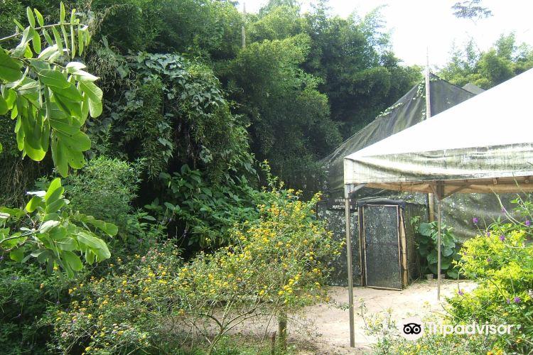 Bonita Farm1