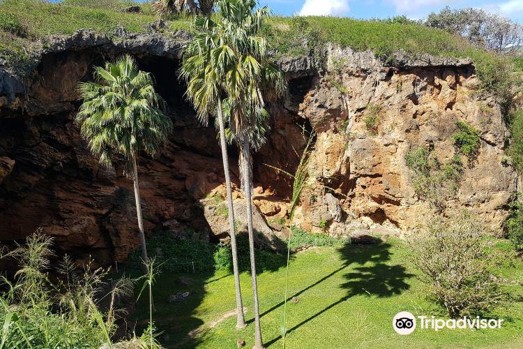 Makauwahi Cave Reserve1