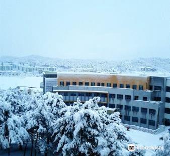오죽헌시립박물관