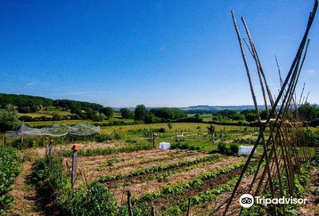 Alôsnys, ecovillage en permaculture