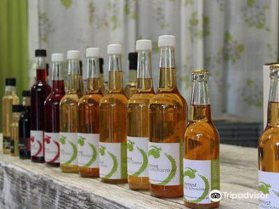 Ulvik Frukt & Cideri