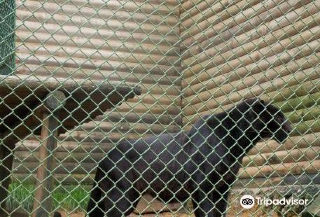Parque Zoo Concepcion