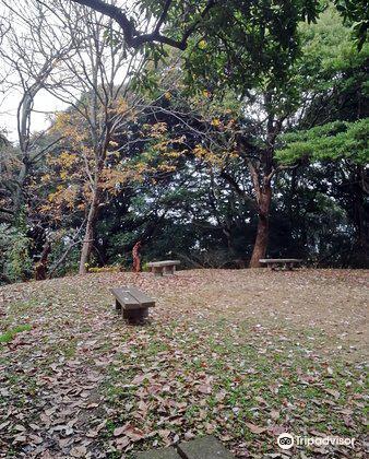 Minami Park3