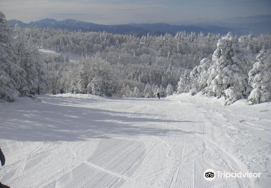 竜王スキーパーク3