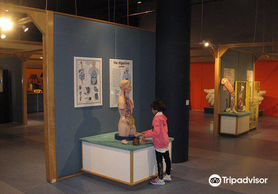 Sharjah Science Museum2