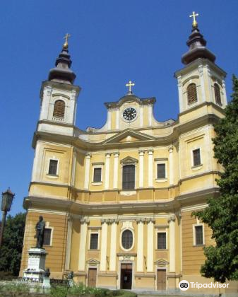 The Roman-Catholic Cathedral4