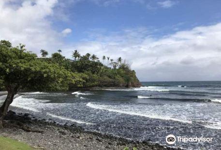 The Hamakua Coast