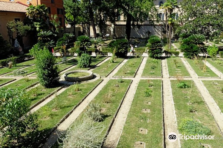 Botanical Garden and Museum (Orto E Museo Botanico)3