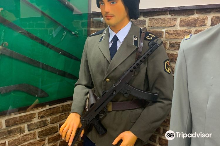The Robert Taylor Museum Of Worldwide Arms1