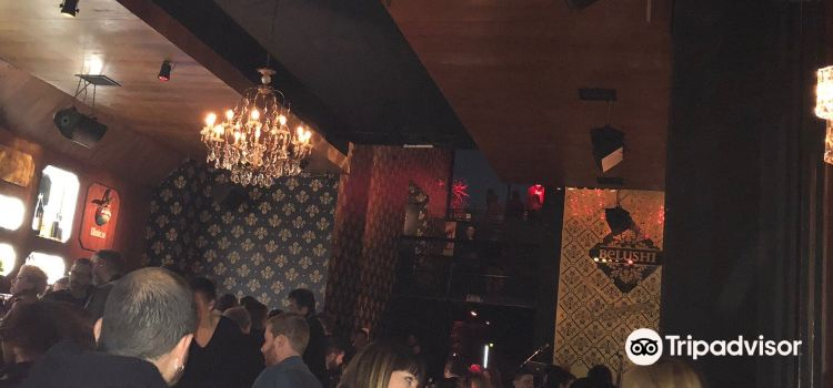 Belushi Martini Bar3