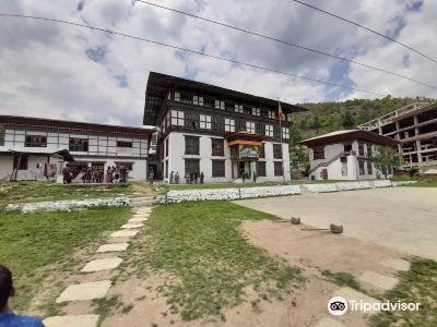 不丹傳統醫藥研究所