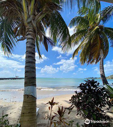 Laborie Beach1