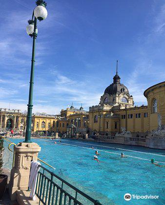 Szechenyi Baths and Pool1