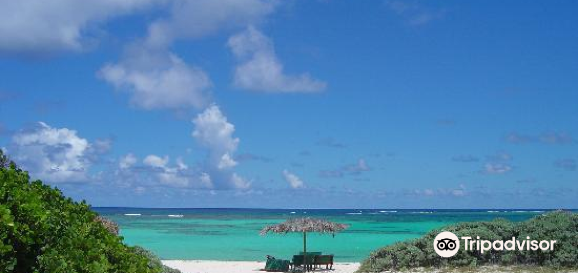 英屬維爾京羣島