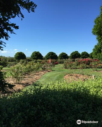 National Rose Garden3