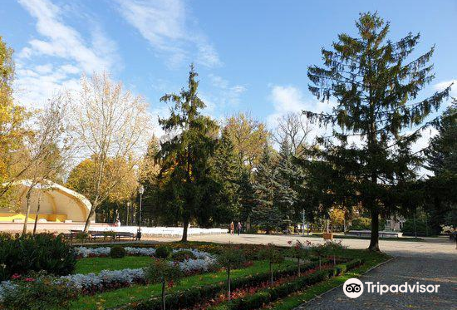 Solankowy Park