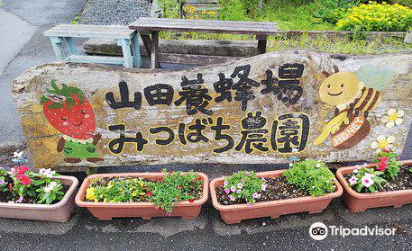 Mitsubachi Nouen (Yamada Honeybee Farm)
