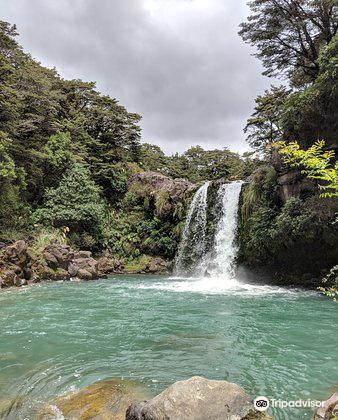 Tawhai Falls3