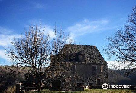 Aveyron Conservatoire Regional Du Chataignier