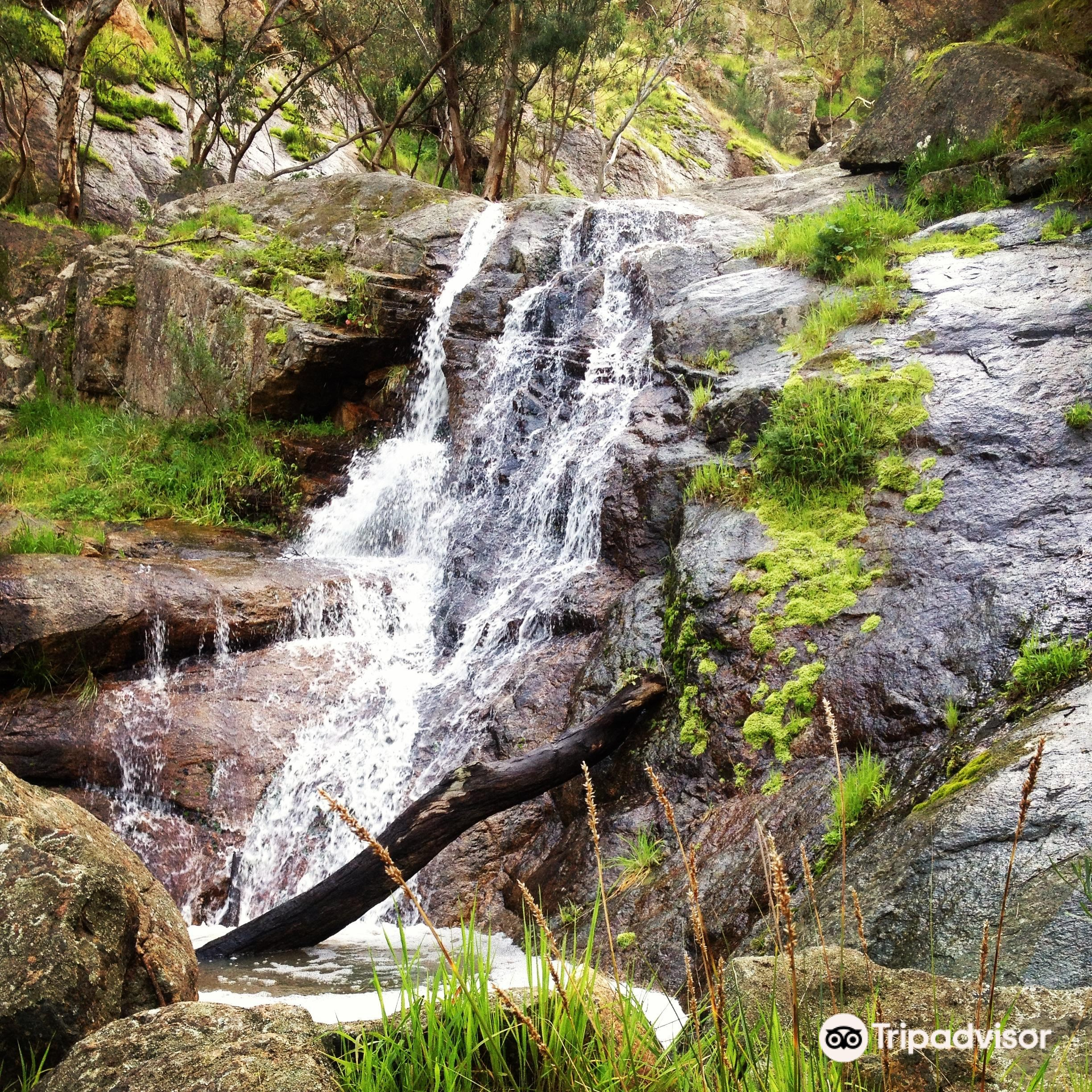 Warby-Ovens National Park