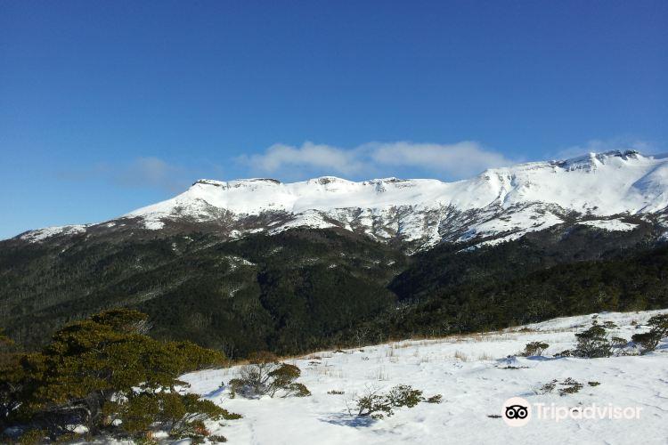 Mount Tarn1
