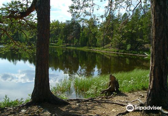 Lemmenjoki National Park4