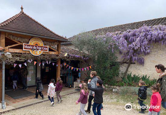 Musée du Foie Gras3