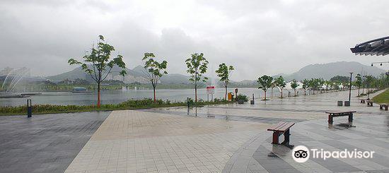 세종호수공원4