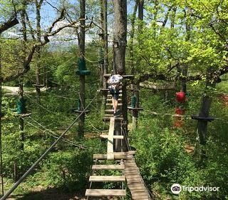 Geneva Adventure Park
